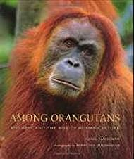 Among Orangutans: Red Apes and the Rise of Human CultureSchaik, Carel van - Product Image