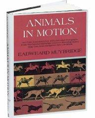 Animals in MotionMuybridge, Eadweard - Product Image