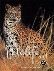 Best of Wildlife Art 2Wolf, Rachel Rubin (Editor) - Product Image