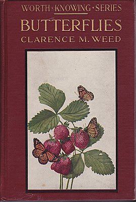 Butterflies Worth Knowing: Little Nature Library Weed, Clarence M. - Product Image