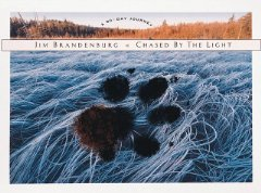 Chased by the Light: A 90-Day JourneyBrandenburg, Jim - Product Image