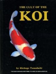 Cult of the Koi HbTamadachi, Michugo - Product Image