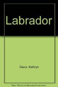 LabradorDavis, Kathryn - Product Image
