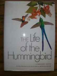 Life of The Hummingbird, TheSkutch, Alexander F., Illust. by: Authur B. Singer. - Product Image