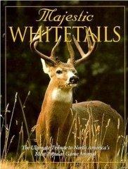 Majestic WhitetailsDregni, Michael - Product Image