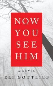 Now You See Him: A NovelGottlieb, Eli - Product Image