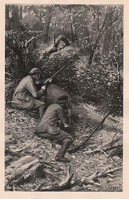 "ORIG B&W SPORTING PRINT/ ""CALLING WILD TURKEYS""0..........Frost (Illust.), A.B., Illust. by: A.B.  Frost - Product Image"