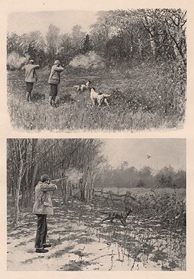 """ORIG B&W SPORTING PRINT/ """"I MISSED MINE TO THE LEFT/ A SHOT IN THE OPEN""""illustrator- A.B.  Frost - Product Image"""