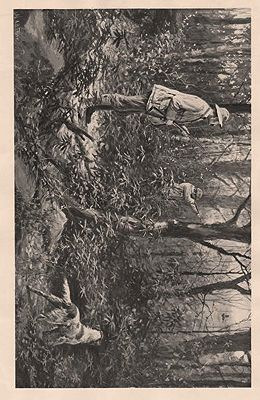 "ORIG B&W SPORTING PRINT/ ""RUFFED GROUSE SHOOTING - A CLEAN MISS AND HIS EYE WIPED""Frost (Illust.), A.B., Illust. by: A.B.  Frost - Product Image"