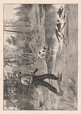 ORIG VINTAGE HUNTING PRINT/ HUNTER WITH RIFLE FOLLOWING HIS HOUNDSillustrator- A.B.  Frost - Product Image