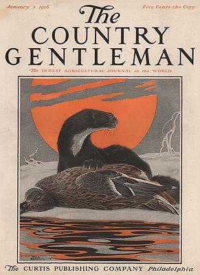 ORIG VINTAGE MAGAZINE COVER/ COUNTRY GENTLEMAN - JANUARY 1 1916Bransom (Illust.), Paul, Illust. by: Paul  Bransom - Product Image