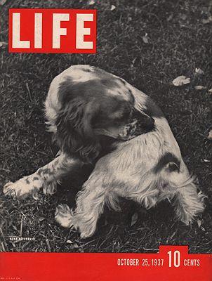 ORIG VINTAGE MAGAZINE COVER/ LIFE - OCTOBER 25 1937illustrator- N/A - Product Image