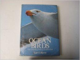 Ocean BirdsLofgren, Lars - Product Image