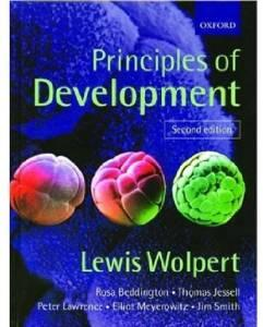 Principles of developmentWolpert, Lewis - Product Image