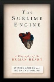 Sublime Engine, TheAmidon, Stephen & Thomas - Product Image