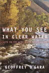 What You See in Clear Water: Life On the Wind River ReservationO'Gara, Geoffrey - Product Image