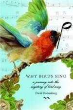 Why Birds Sing: A Journey Into the Mystery of Bird Songby: Rothenberg, David - Product Image