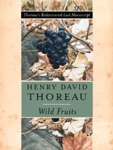 Wild fruits : Thoreau's rediscovered last manuscriptThoreau, Henry David - Product Image