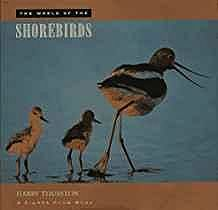 World of the Shorebirds, TheThurston, Harry - Product Image